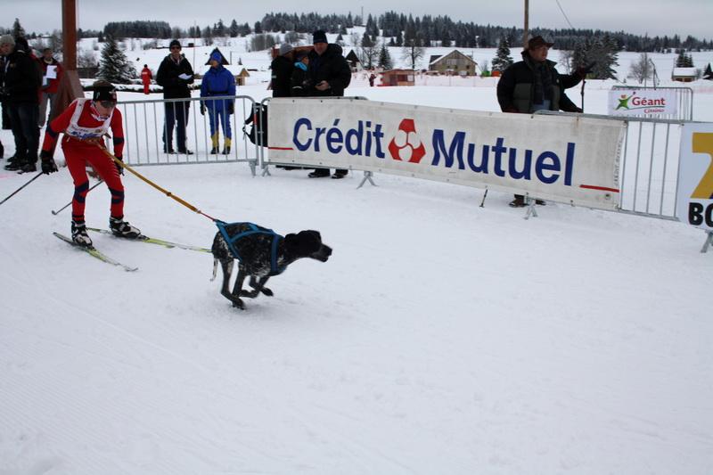 Neige et chiens 006_mg