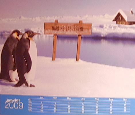 Calendrier_pingouins