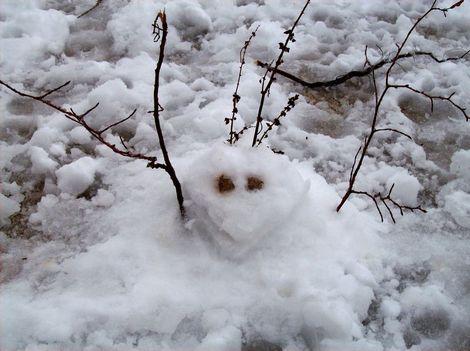 Premier_monstre_des_neiges