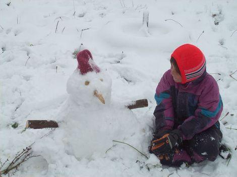Premire_poule_des_neiges