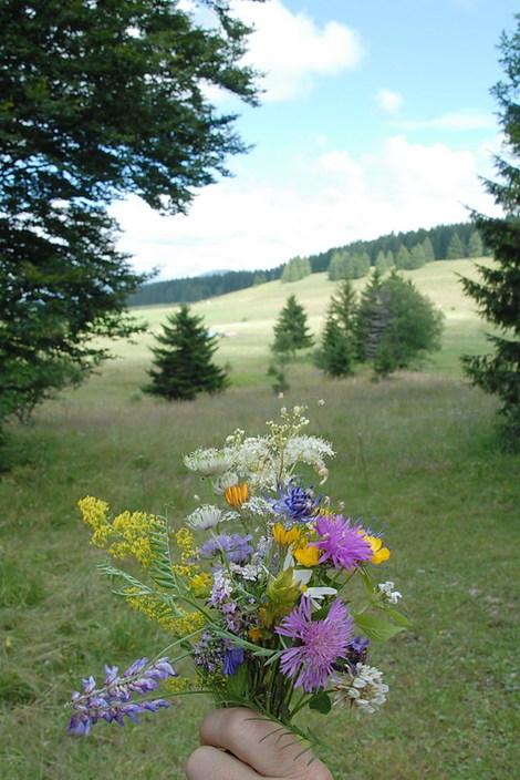 Dsc_0129_bouquet
