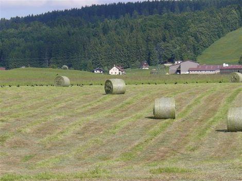 Juin2008_72