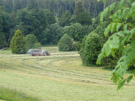 Juin2008_54