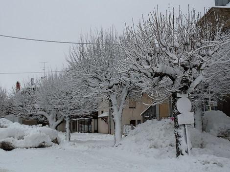 Dsc_0020_neige_carlines