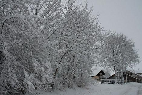 Dsc_0013_neige_ptits_fourgs