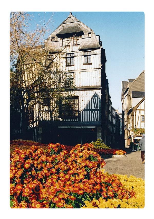 1996-11-01 rouen chrysantheme_3_2_mdc