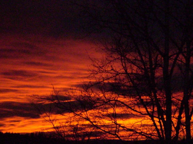 Coucher de soleil 14-01-2011 002_mg