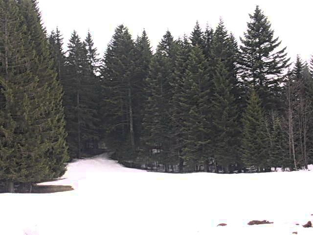 2009_065_md