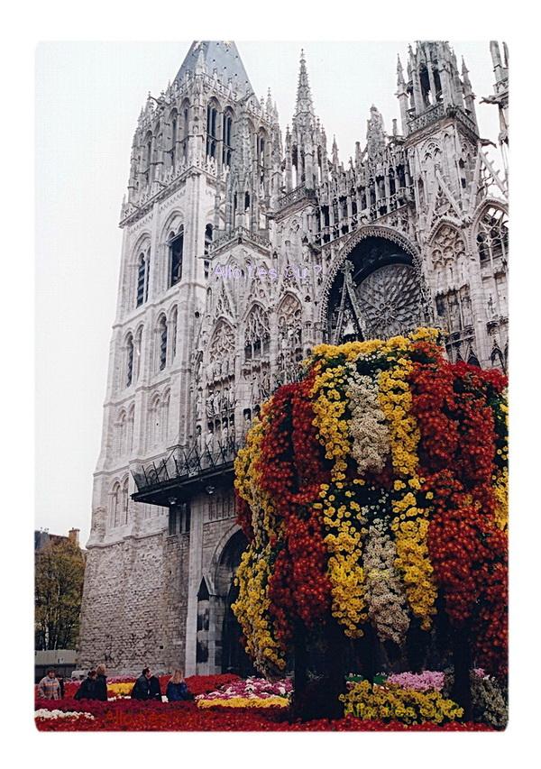 1994_11_00  rouen chrysanthemes 2