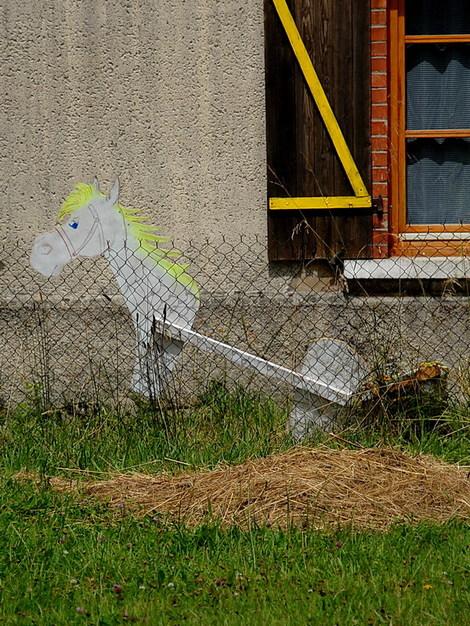 Dsc_0017_cheval