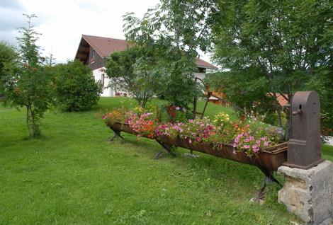 Dsc_0035_jardiniere_fleurs