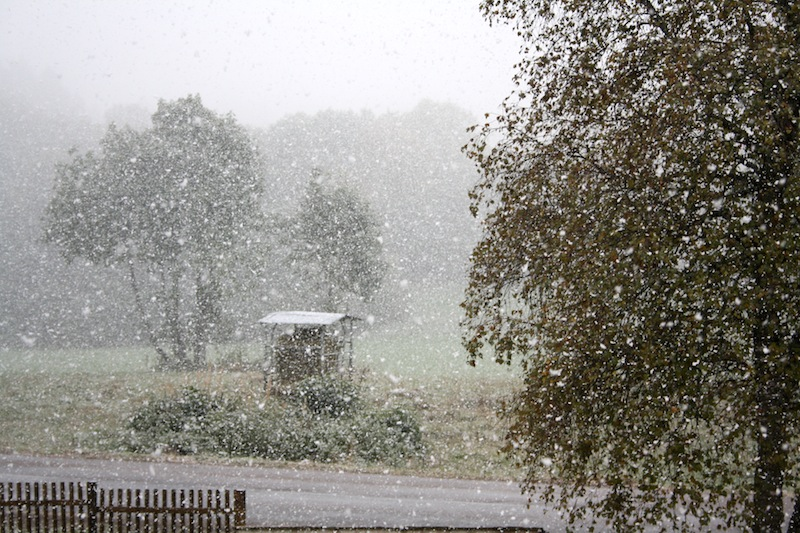 10 octobre,neige 001