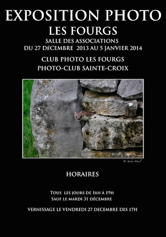 Affiche expo photo les fourgs