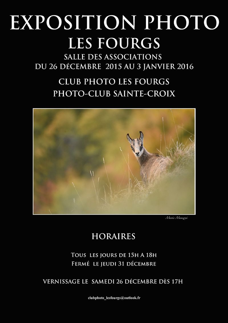 Affiche expo 2015_MM - copie