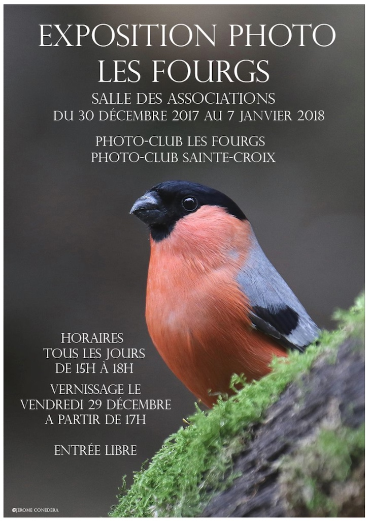 Affiche expo photo les fourgs_FB