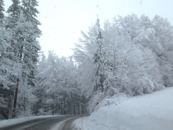 IMG_7208 neige route