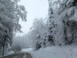 IMG_7206 neige route