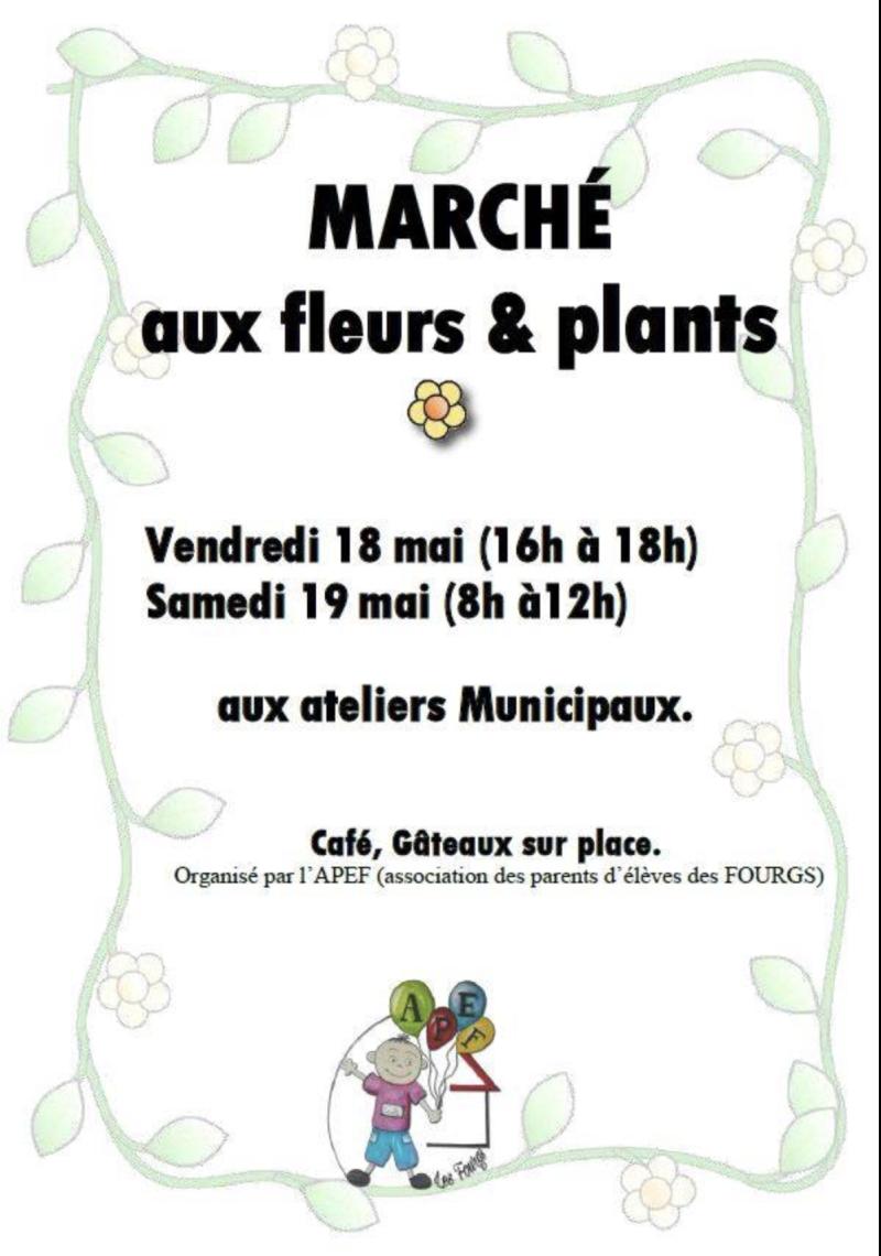 Marché aux fleurs et plants copie