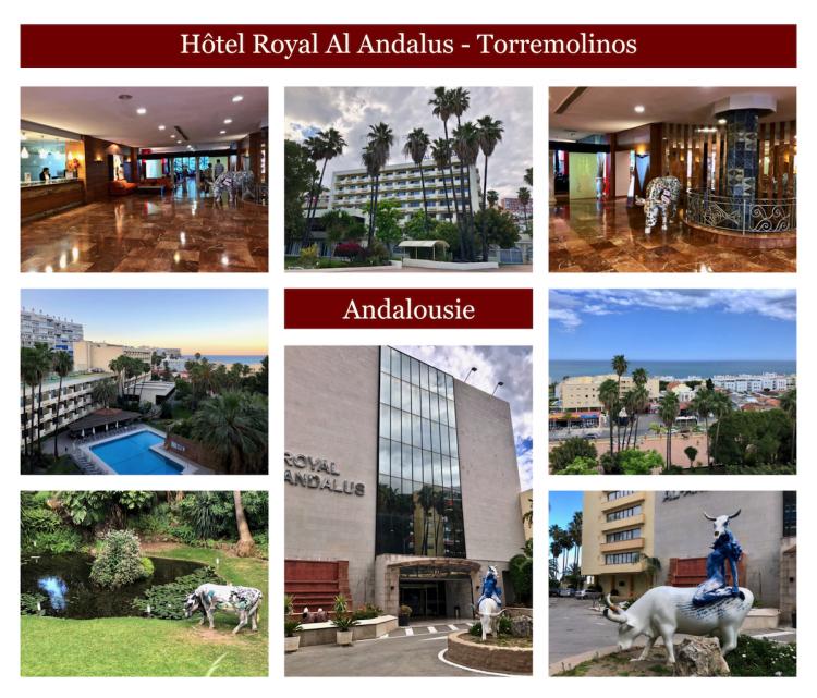 Hotel royal al andalus copie
