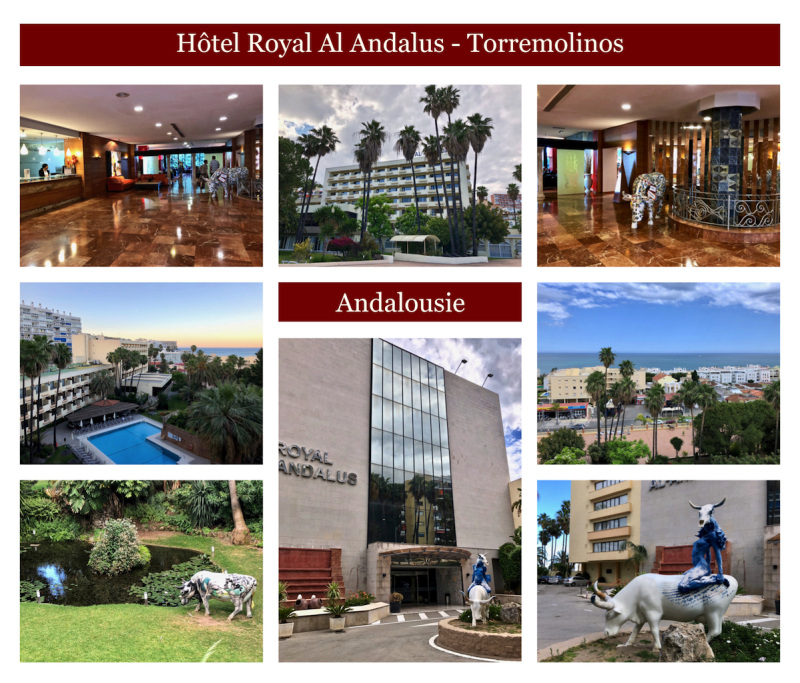 Hotel royal al andalus copie