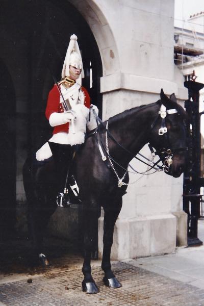 Londres Garde Cheval 2