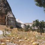 Turquie 1998-08-23 Cappadoce copie
