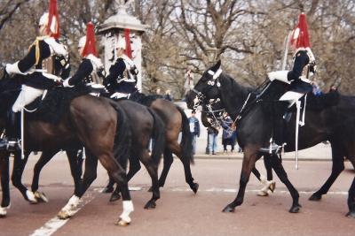 Londres Garde Cheval 1