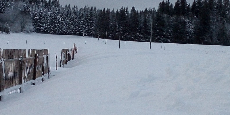 2020-12-29 Les Fourgs Neige MH 2