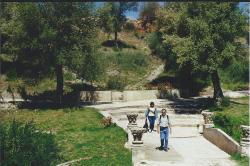 Maroc Volubilis 8