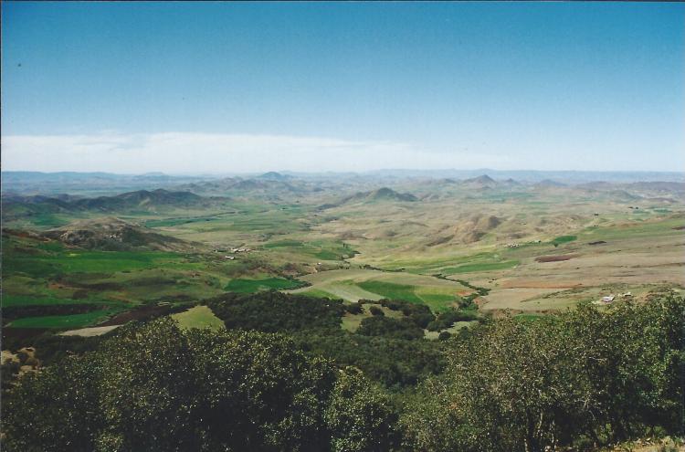 Maroc Azrou sur la route 1